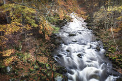 River Deveron in Autumn colour in Huntly, Scotland. Fast flowing River Deveron in Autumn colours in Aberdeenshire, Scotland royalty free stock images