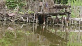 River dock stock video