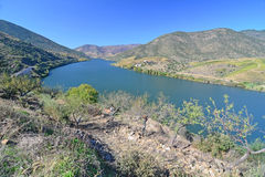 The River Douro Royalty Free Stock Image