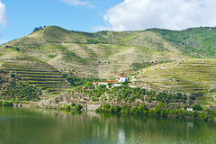 River Douro in Portugal Royalty Free Stock Photo