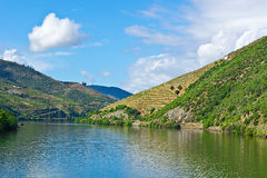 River Douro in Portugal Royalty Free Stock Image