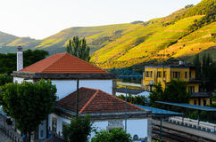 River Douro valley, Portugal Stock Images