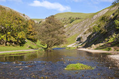 The River Dove, Dovedale, Derbyshire, England. Dovedale in the Peak District, Derbyshire, England is a wonderful area for walking Stock Images