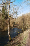 The River Dove, Dovedale, Peak District National Park Stock Images