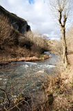 The River Dove, Dovedale, Peak District National Park Royalty Free Stock Photos
