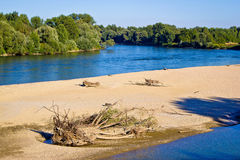 River of Drava green nature Royalty Free Stock Image