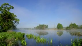 River is drawn in by white mist at dawn. Spring morning, picturesque rural view of the river stock video footage