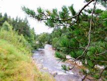 River Druie in the Cairngorms National Park, Scotland Stock Photos