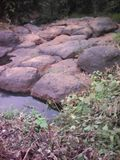 River. Dry river in kenya royalty free stock photos