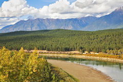 The river drying up by autumn in Yellowstone Royalty Free Stock Photo