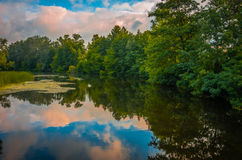 River early in the morning Royalty Free Stock Photos
