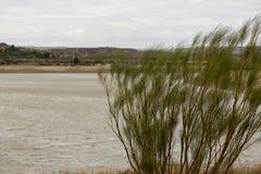 The river Ebro. On its way through Caspe, Aragon royalty free stock photography