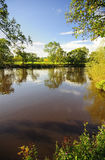 River Eden, Cumbria. The tranquil waters of the river Eden, in Cumbria, England. In summer this tree lined river is idyllic, in the winter it becomes a raging Royalty Free Stock Photos