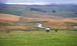 River Eden and the Eden Valley countryside views. River Eden and the Eden Valley Green fields and water meadows with fell behind in Cumbria United Kingdom. sheep stock photo
