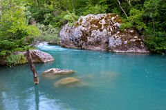 River with emerald water Royalty Free Stock Photography