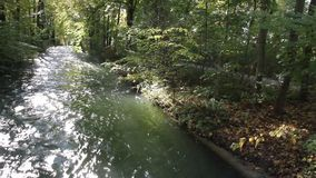 River in the English garden stock footage
