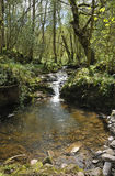 River Enig at Pwll-y-Wrach Stock Images