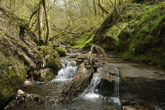 River Enig at Pwll-y-Wrach Royalty Free Stock Photo