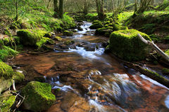 The river Ennig; at the Pwll y Wrach nature reserve Stock Photos