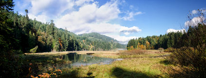 River estuary, Canada. Panoramic photo of a river estuary on Vancouver Island, British Columbia, Canada Royalty Free Stock Photo
