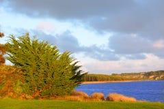 River Estuary Landscape Australia Stock Image