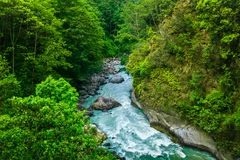River from everest trek. In nepal Royalty Free Stock Photo
