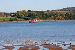 River Exe Royalty Free Stock Images