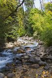 River in Fall. High mountain river in the fall Royalty Free Stock Images