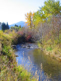 River in the Fall. A small river, East of Bozeman, Montana reflects the deep blue sky of an autumn day.  Fly fishing often yields small trout in this stream Royalty Free Stock Photography