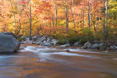 River and fall foliage, New Hampshire (horizontal). Fall foliage along the Pemigewasset River in the White Mountains of New Hampshire Stock Photography
