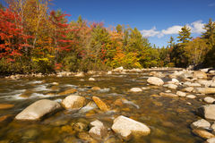 River through fall foliage, Swift River, New Hampshire, USA Royalty Free Stock Photo
