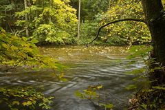 River in fall forest Royalty Free Stock Photos
