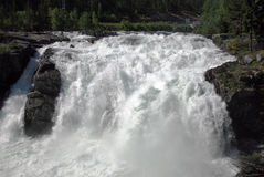 River Falls II. Large waterfalls in a forest Stock Images