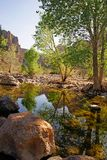 River at fish creek canyon in Arizona Stock Photo