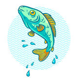 River fish. Illustration of a fish jumping out of water Royalty Free Stock Photography