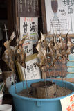 River fish at the market, Takayama, Japan Royalty Free Stock Images