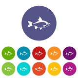 River fish set icons Royalty Free Stock Photos