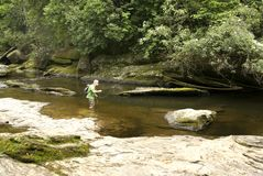 River fishing. A man trout fishing in a mountain river, wading in the water Royalty Free Stock Photos