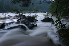 River in flood. Ocoee river at high water with rocks and trees and slow exposure Royalty Free Stock Image