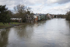 River in flood at Maidenhead. River Thames in flood at Maidenhead winter 2014 Stock Photography