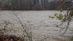 River flood stock video footage