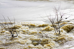 River in flood Stock Photography