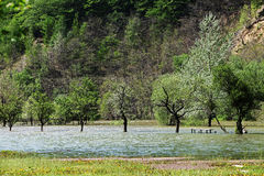 River flood in the spring valley of Cerna river. River flood in the valley of Cerna river, Romania Stock Photos