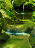 River flow. Small mountain river flows on cascade amongst stone with moss Royalty Free Stock Photos