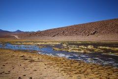 River flow in the Atacama desert Stock Photography