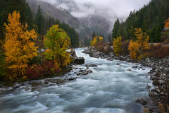 River flow in Leavenworth, Washington. Autumn in Leavenworth, Washington, River flow thru foilage Autumn wood Stock Photography