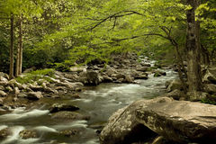 River flow in North Carolina. Picture of river flow with rocky boulders Stock Image