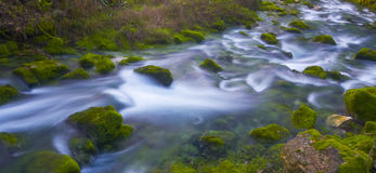 River flowing Stock Photography