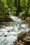 River flowing through the Breitachklamm Gorge Royalty Free Stock Photos