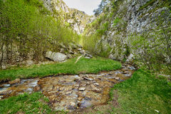 River flowing through canyon Stock Photography
